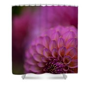 Pink Dazzle Shower Curtain