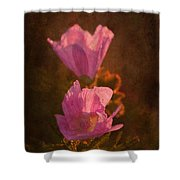 Pink Delight Shower Curtain
