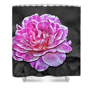 Pink Flame Shower Curtain