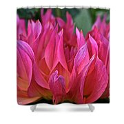 Pink Flames Shower Curtain