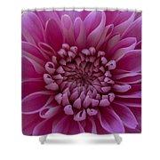 Pink Flower Shower Curtain