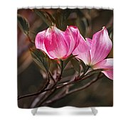 Pink Flower Tree Blossoms No. 247 Shower Curtain