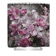 Pink Flowering Crabapple And Grunge Shower Curtain