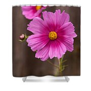 Pink Flowers And Wood  Shower Curtain