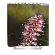 Pink Fuzzy Shower Curtain