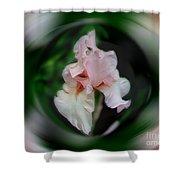 Pink Iris Energies Shower Curtain