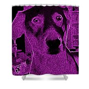 Pink Liberty Shower Curtain