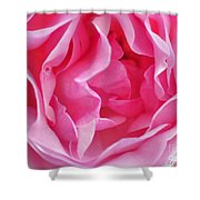 Pink March Rose 2012 Limited Edition Shower Curtain