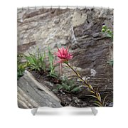 Pink Mountain Flower Shower Curtain
