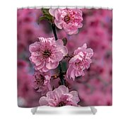 Pink On Pink Shower Curtain