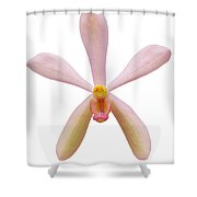 Pink Orchid Head Shower Curtain