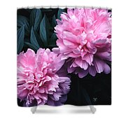 Pink Peony Pair Shower Curtain
