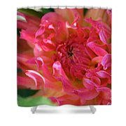 Pink Petal Flames Shower Curtain