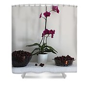 Pink Phalaenopsis Orchid And Sour Cherries Shower Curtain