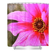 Pink Power Shower Curtain