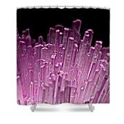Pink Quartz Shower Curtain