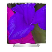 Pink Quill Shower Curtain