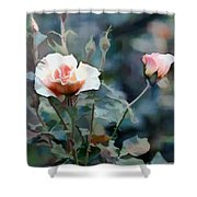 Pink Rose Bush Shower Curtain