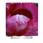 Pink Silk Shower Curtain