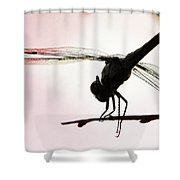 Pink Skies Shower Curtain