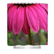 Pink Skirts Shower Curtain