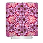 Pink Splash Mandala Abstract Shower Curtain