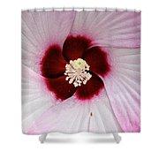 Pink Swirl Hibiscus Shower Curtain