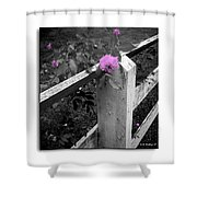 Pink Touch Shower Curtain