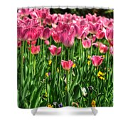 Pink Tulip Flowers Shower Curtain