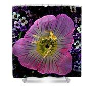 Pink Wildflower  Shower Curtain