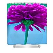 Pink Zin II Shower Curtain