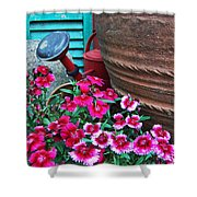 Pinks The Garden Beauty - Dianthus Shower Curtain
