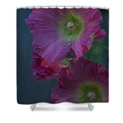 Piquant Shower Curtain