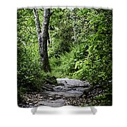 Pisgah Path Shower Curtain