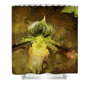 Pixie Orchid Shower Curtain