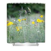 Plains Yellow Daisy Shower Curtain