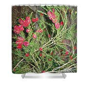 Plant And Flower Shower Curtain