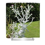 Plant And Flowers Shower Curtain