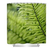 Plant Detail, Close Up Shower Curtain