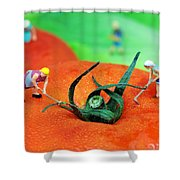 Planting On Tomato Field Shower Curtain