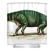 Plateosaurus Engelhardti, A Prehistoric Shower Curtain