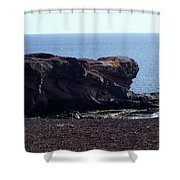 Playa Blanca Shower Curtain