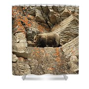 Playing Mountain Goat Shower Curtain