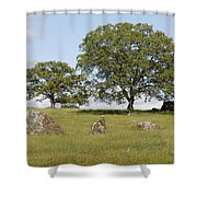 Pleasant Hillside Shower Curtain