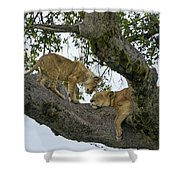 Please Wake Up Shower Curtain