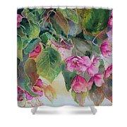 Plum Blossom Shower Curtain
