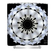 Plumeria 4 Shower Curtain