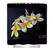 Plumeria Bouquet Shower Curtain