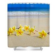 Plumerias On Beach II Shower Curtain