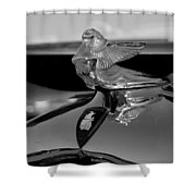 Plymouth Lady Shower Curtain